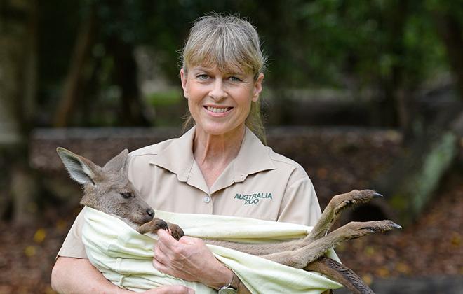Terri Irwin holding a baby kangaroo.