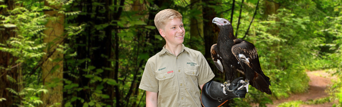 Robert Irwin with an Eagle standing on his arm.