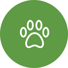 Species of animal icon