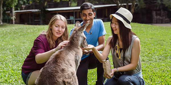 International visitors with a Kangaroo.