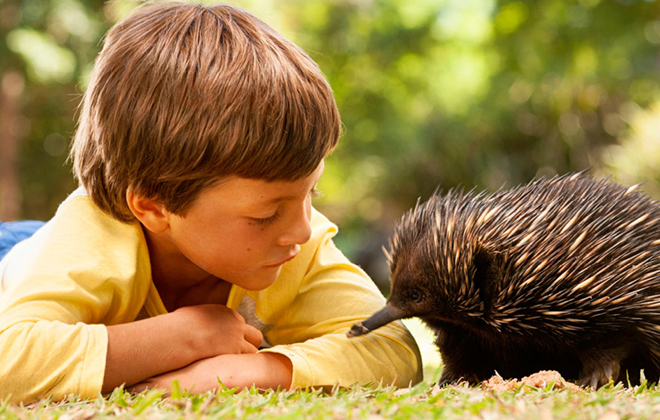 A visitor and an Echidna together.