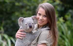 Bindi cuddling a koala