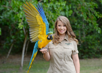 Bindi Irwin with Queto the Blue-and-gold Macaw on her hand with wings open.