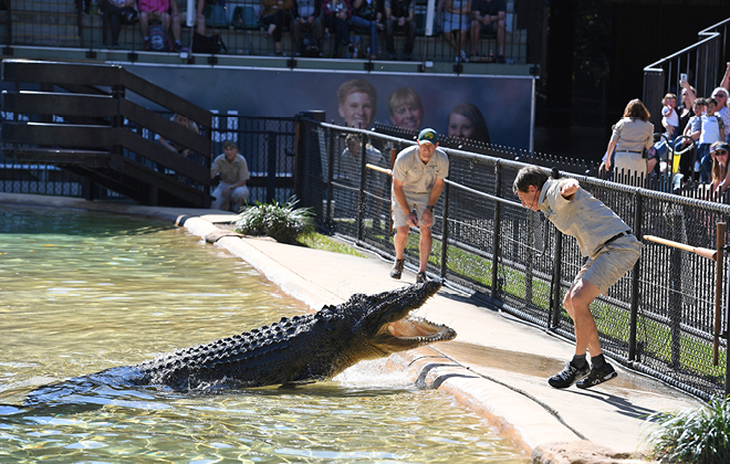 Zookeepers during a crocodile show.
