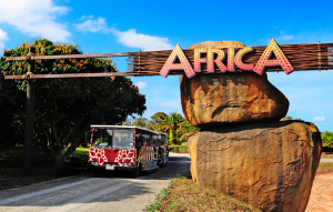 Entrance to the Africa area.
