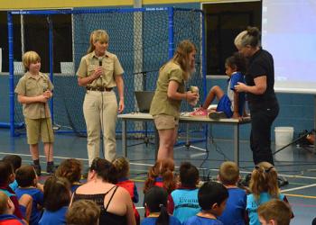 Irwins teaching how to treat a snake bite.