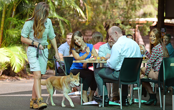 Breakfast Functions at Australia Zoo