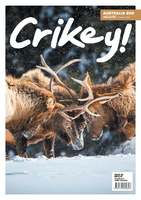 Crikey Magazine Issue 48
