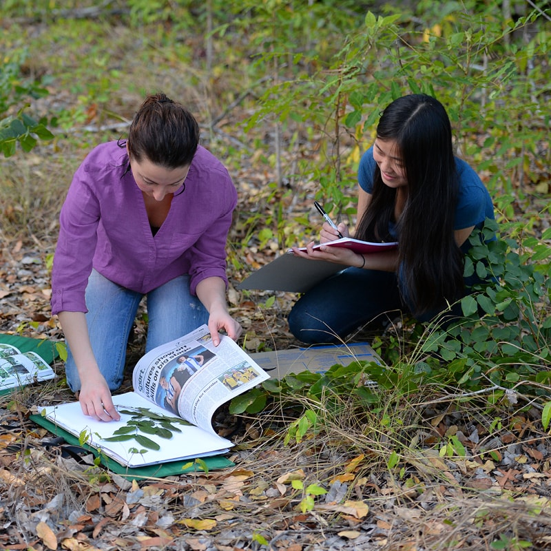 Two people looking at plants and a book.