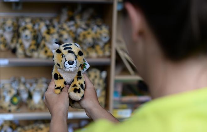 Tiger Cart Gifts