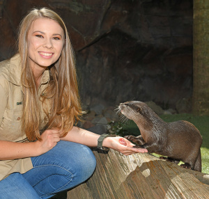 Otter Encounter