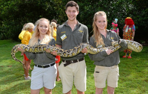 Volunteering at Australia Zoo