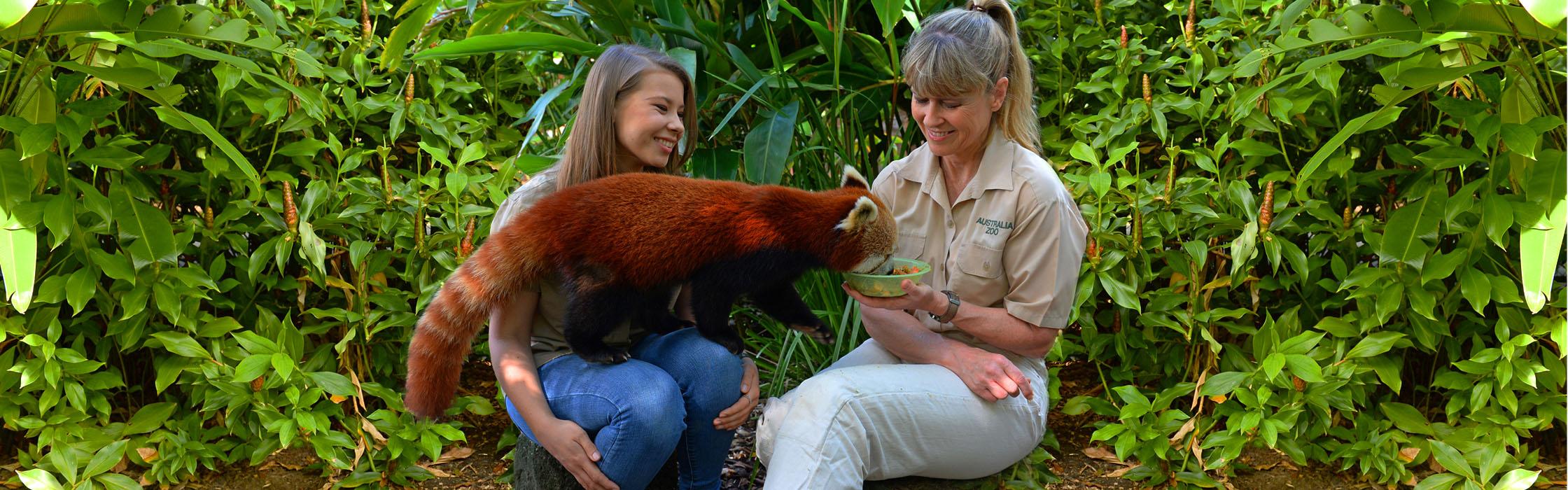 Experiences - Animal Encounters - Rascally Red Panda Encounter2240x700