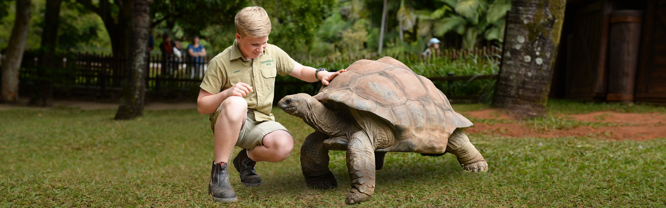Experiences-Animal Encounters-Totally Tortoise Encounter2240x700