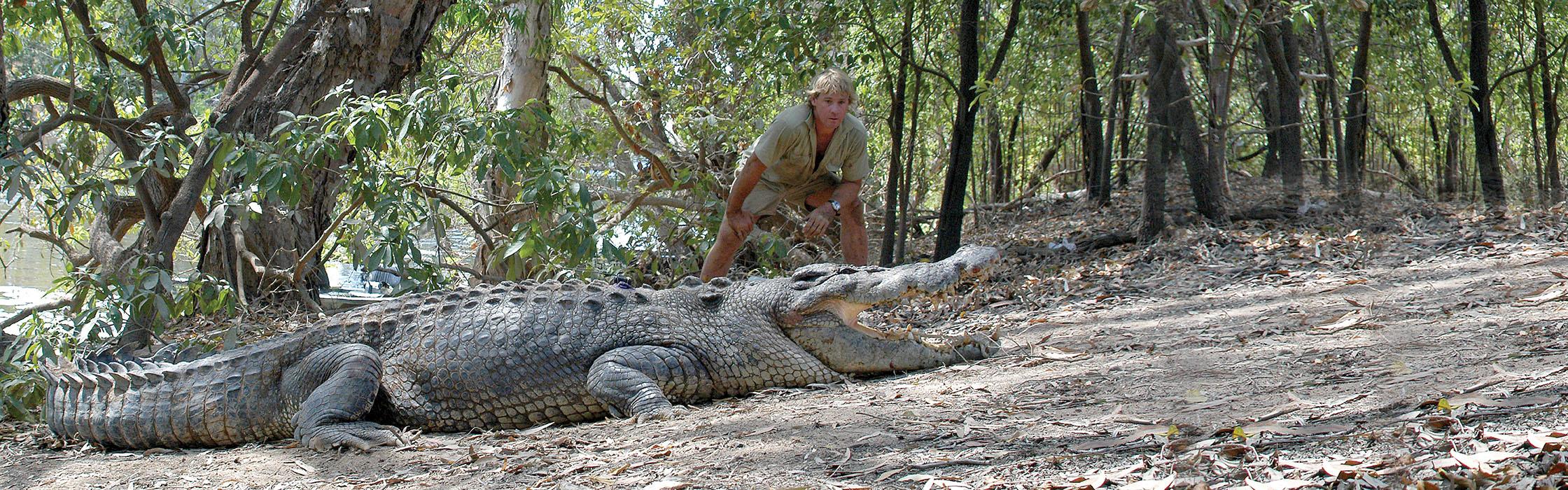 SupportWildlife-CrocodileConservation_Petition2240x700
