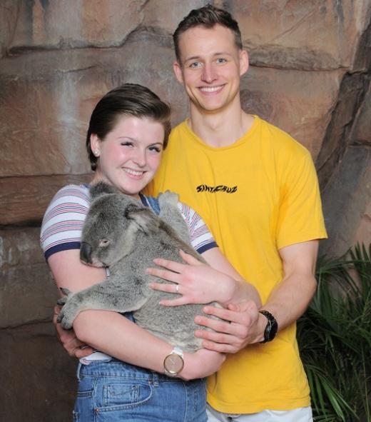 Couple and koala proposal