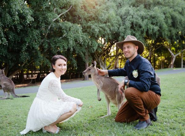 kangaroo patting