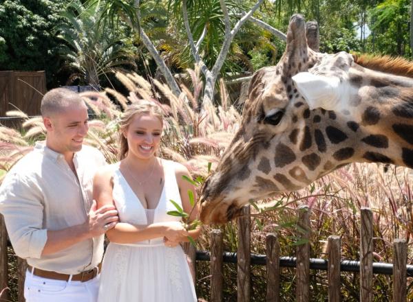 giraffe wedding