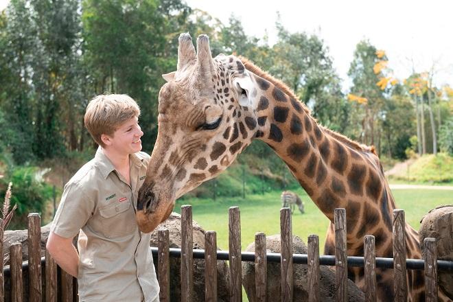 Robert Irwin Giraffe