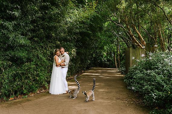 lemur wedding photo
