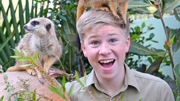 Robert Irwin and the meerkats